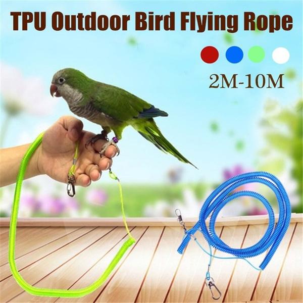 birdleash, parrottrainingrope, Pets, flyingtrainingrope