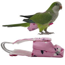 parrotflyingcostume, Pets, Flying, Costume