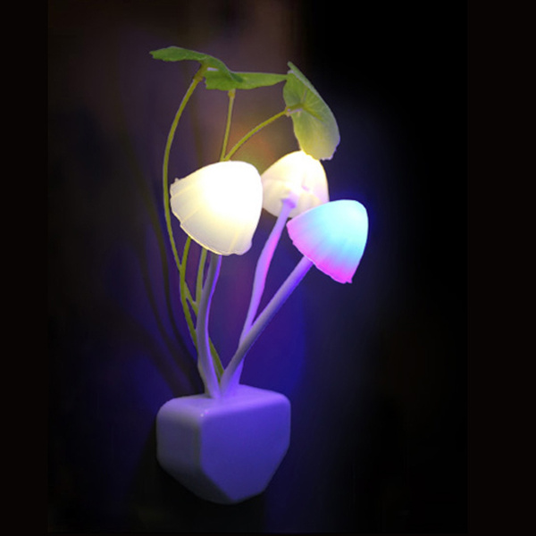 lovely, lightsense, Romantic, Mushroom