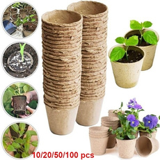 tray, Flowers, Gardening, Garden