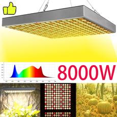 ledgrowplantlight, Flowers, hydroponiclight, lights