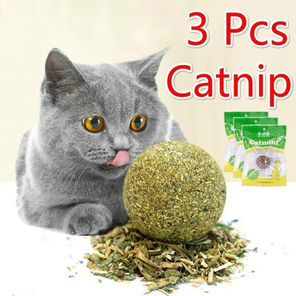 cattoy, Toy, catnipcattoy, Pets
