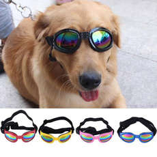 Foldable, Fashion, gogglesampsunglasse, Pets