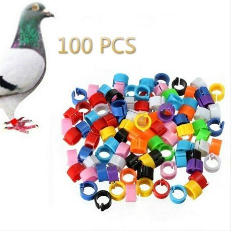 8MM, pigeonbelt, Jewelry, poultrybreeding