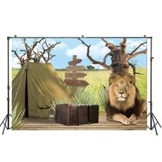 King, lionking, Photography, theme