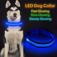 led, fluorescence, petsupply, Pets