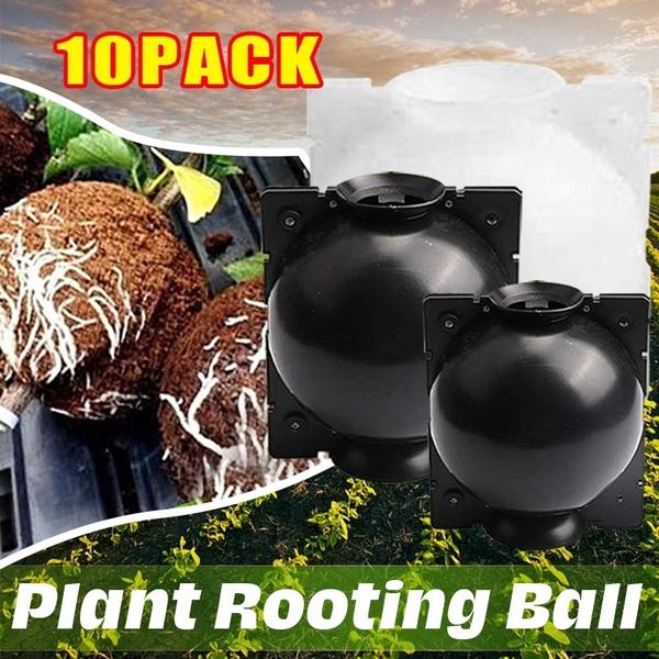 case, Box, Plants, cultivatingbox