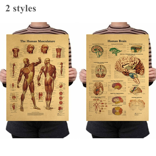 bodyposter, Posters, Stickers, decoration