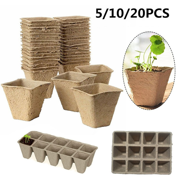 Plants, Garden, seedlingtray, biodegradable