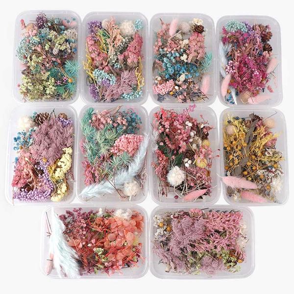 Box, Plants, driedflowerpendant, art