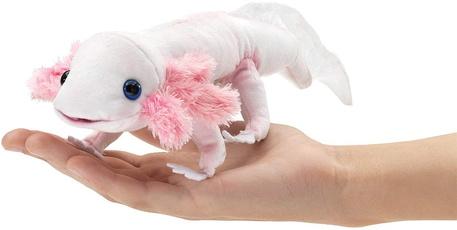 axolotl, folkmani, browna