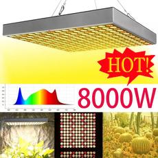 lightbulbsled, Flowers, led, Garden