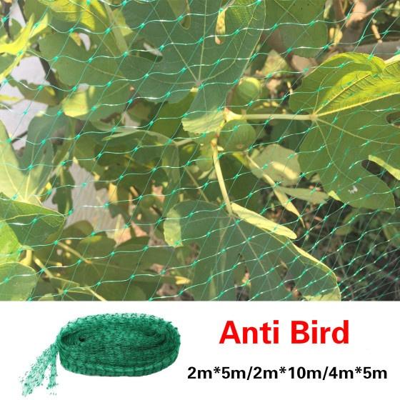 Plants, plantgrowprotect, greenclimbingnet, climbingnet