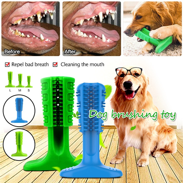 Toy, Pets, dogtoothbrush, Dogs