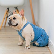 dogjeanclothe, smalldogjeansdre, dogjean, Cosplay
