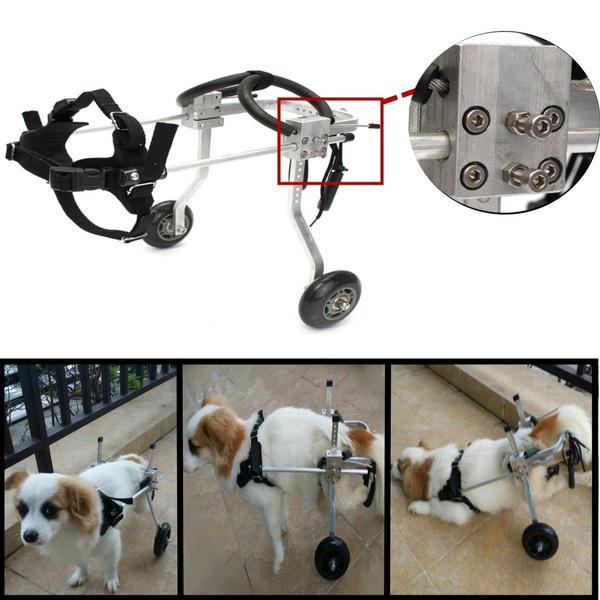 petwheelchair, dogwheelchair, handicappedpet, Doggie