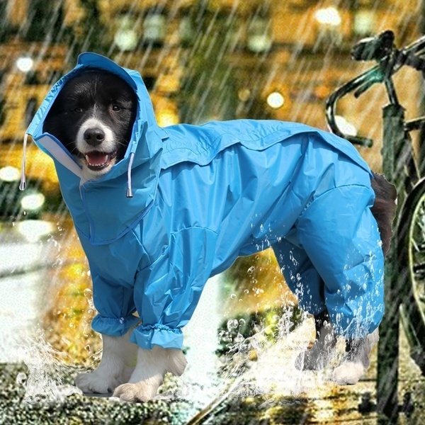 puppy, petaccessorie, Waterproof, Kæledyr