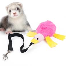 pet dog, elasticrope, Toy, Elastic
