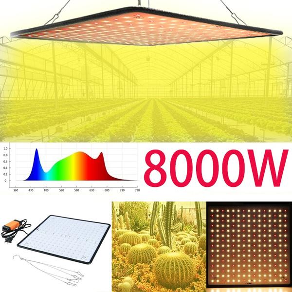 growinglight, Gardening, lights, Indoor