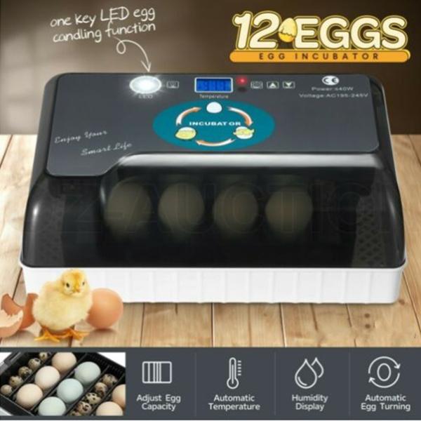 chickincubator, eggpoacher, incubatoregg, Equipment
