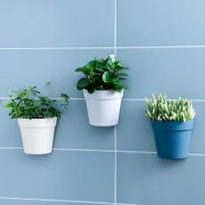 homegardendecoration, Bonsai, Plants, wallmounted