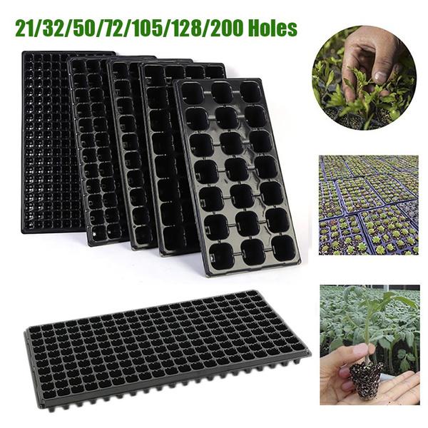 Box, plantseedgrowbox, Plants, growbox