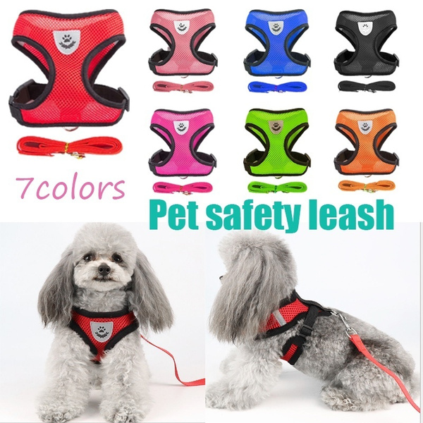 Outdoor, Pets, Harness, gatosaccesoroi
