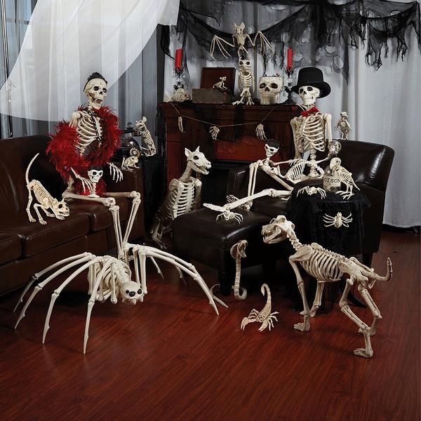 skeletonmodel, Decor, Skeleton, house