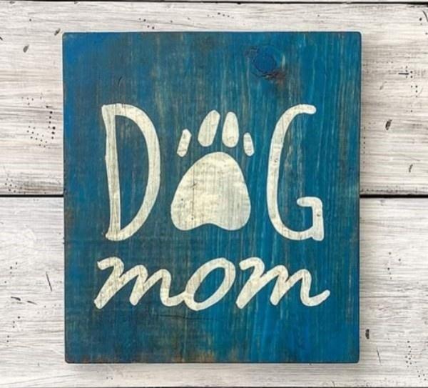 Pets, storeupload, Dogs