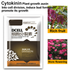 Bonsai, planting, Plants, Flowers
