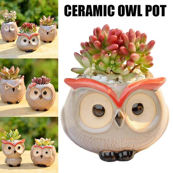 Mini, Decor, forsucculent, Owl