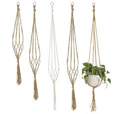 Rope, Plantas, hangingbasket, Garden