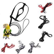 Training, Adjustable, birdharnes, Parrot