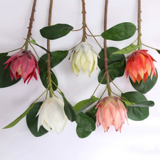 decoration, Flowers, Home Decor, Gifts