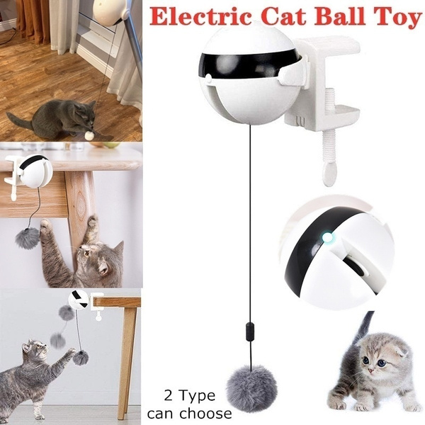 cattoy, Toy, catsupply, Electric