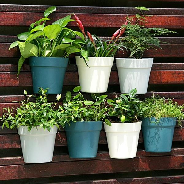 Plants, balconybasket, Yard, Garden