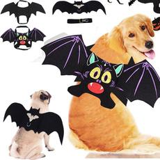 dogcosplay, halloweenbat, Halloween, Fashion
