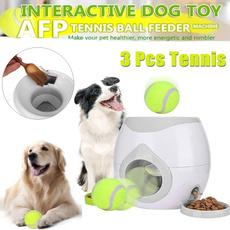 dogtoy, Ball, Pets, Tennis