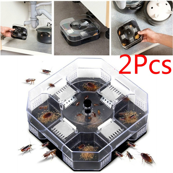 Box, catchinginsectpest, householdproduct, cockroachkiller