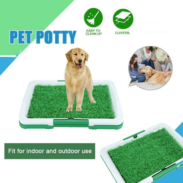 pottytrainer, Pets, petpottymat, Indoor