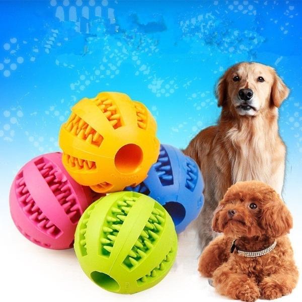 petmolarball, Pets, kittentraining, puppiesgnawattoy