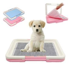 Box, dogtoiletlawn, puppy, cattoilet