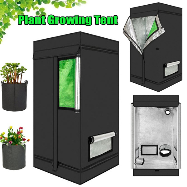 plantgrowingtent, Plants, plantgrowingtentwithwindow, Sports & Outdoors