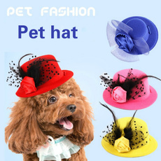Fashion, Outdoor, formalhat, doghat