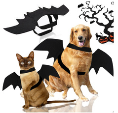 Bat, Fashion, Cosplay, pet outfits