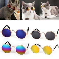 Fashion, eye, catsunglasse, Pets