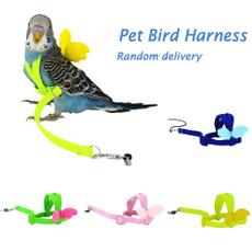 parrotharnessleash, Adjustable, Parrot, Pets
