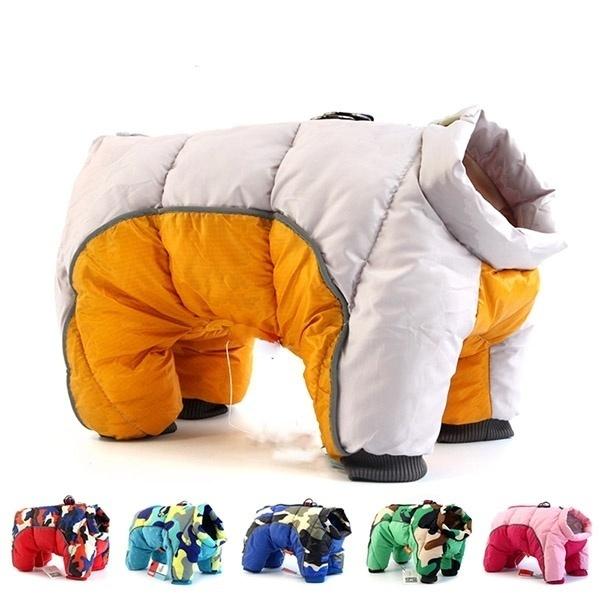 Fashion, Cotton, Winter, pet outfits