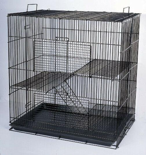 Animal, hamster, Pet Supplies, rabbit