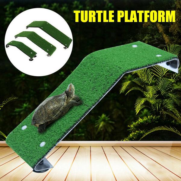 Turtle, turtleladder, Tank, restingterrace